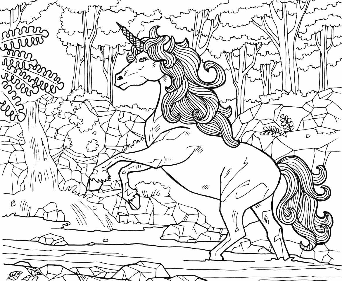 Free Coloring Page 14