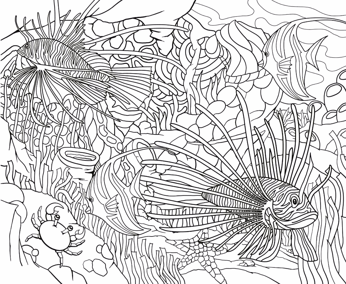 Free Coloring Page 15