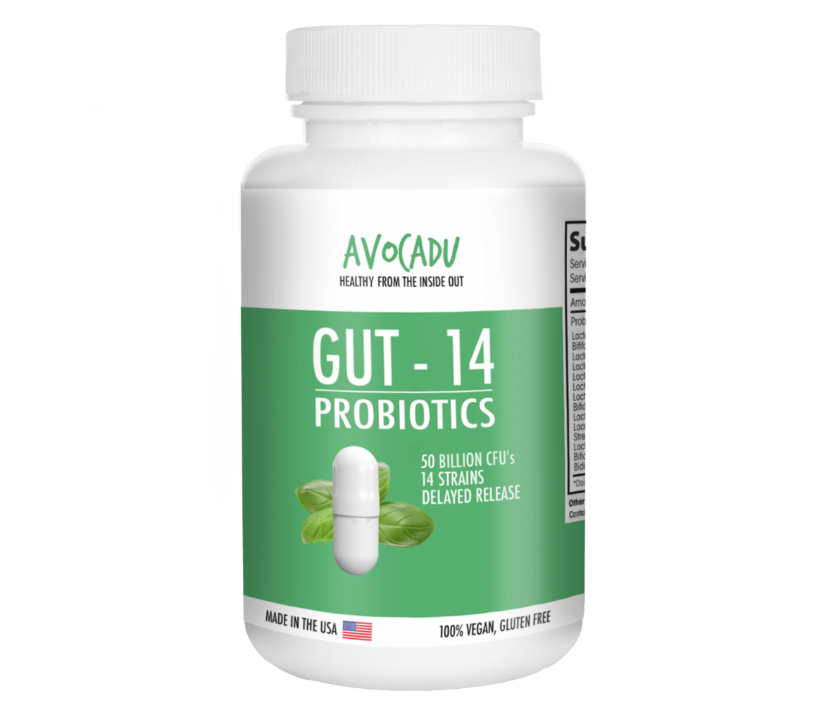 10 Warning Signs You Have An Unhealthy Gut And What To Do About It Gastric Health Tablet Green World Avocadu Probiotics Supplement