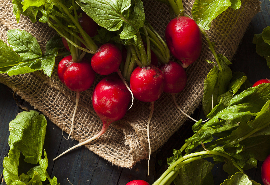 superfoods-radishes