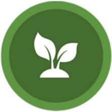 Ambronite Plant-based