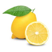 Lemon CBD Hemp Seed Oil