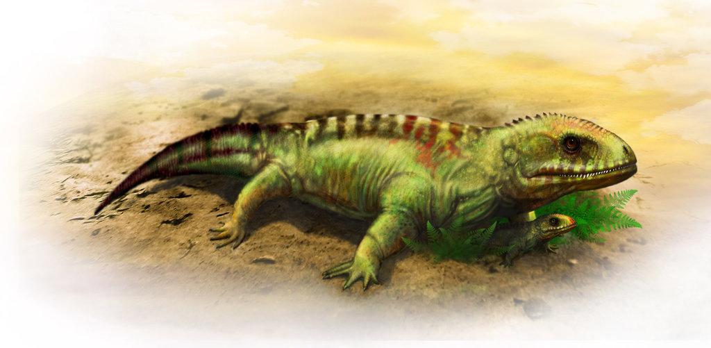 Seymouria Lizard