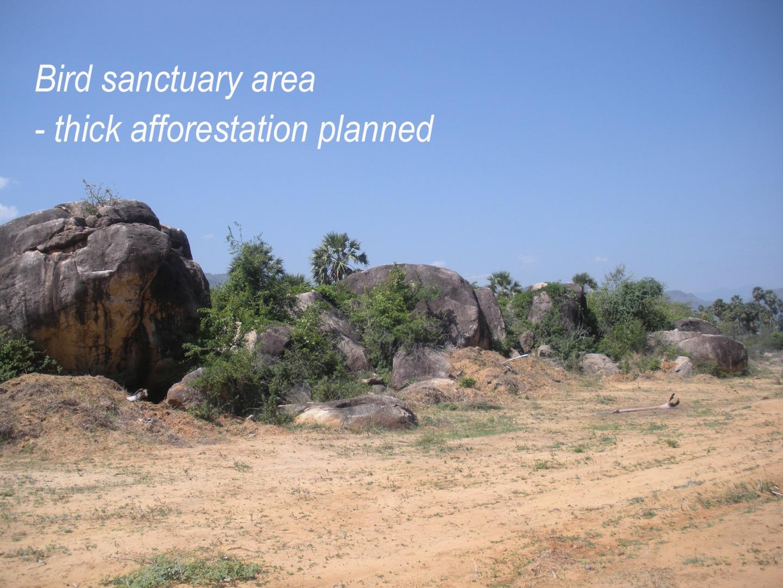 amma sanctuary