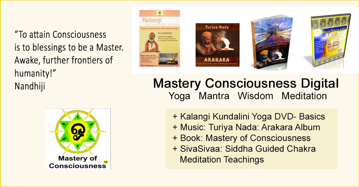 Siddha Teaching bundle