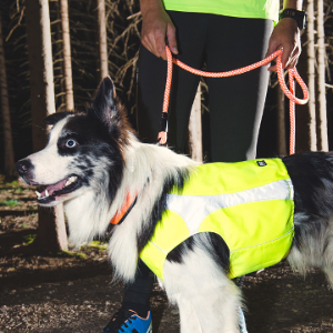 Ultrabright Polar Dog Vest by Hurtta