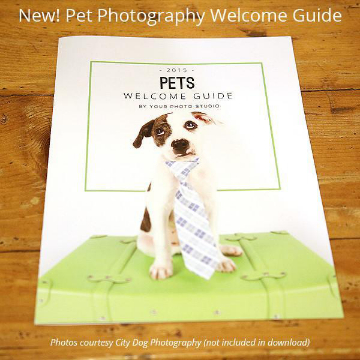 Pets Welcome Guide Template