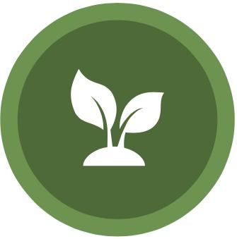 vegan, plant-based