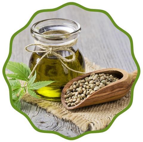Organic Cold-Pressed Cannabis Sativa Hemp Oil