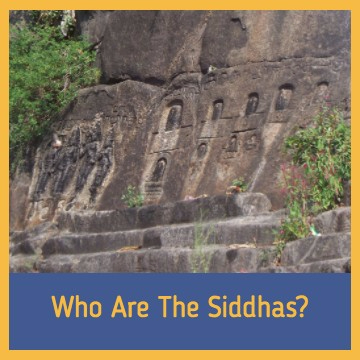 who are the siddhas