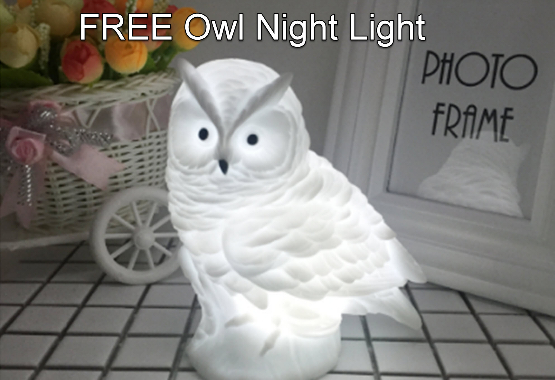 free owl night light giveaway