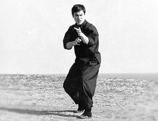 Bruce Lee | Shop The Official Store
