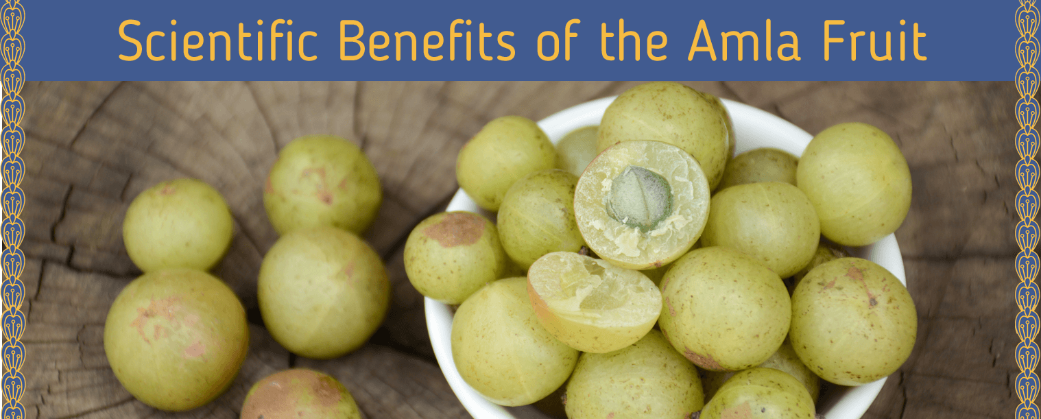 scientific benefits of amla