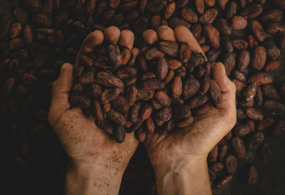 cacao and the paleo diet