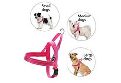 Quick fitting dog harness is great for dogs of all sizes