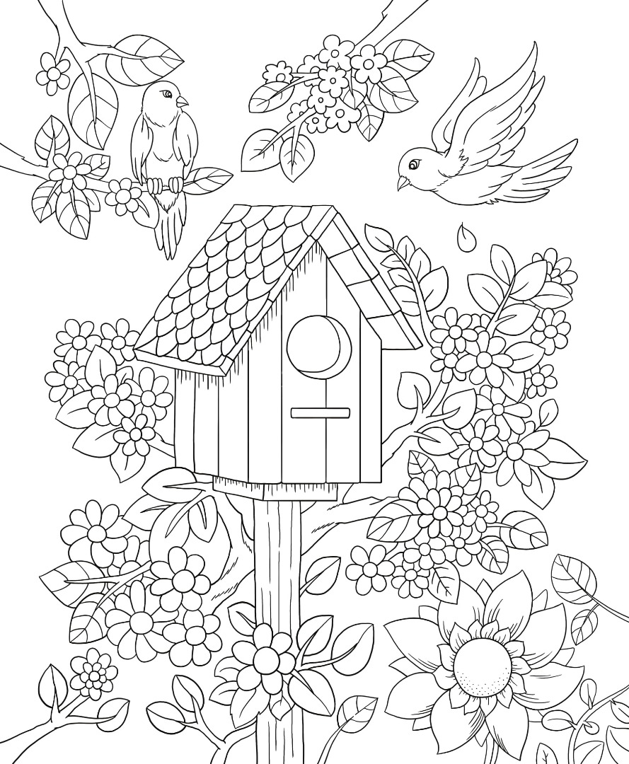 free printable birdhouse coloring pages | Freebie Friday Birdhouse Adult Coloring Book