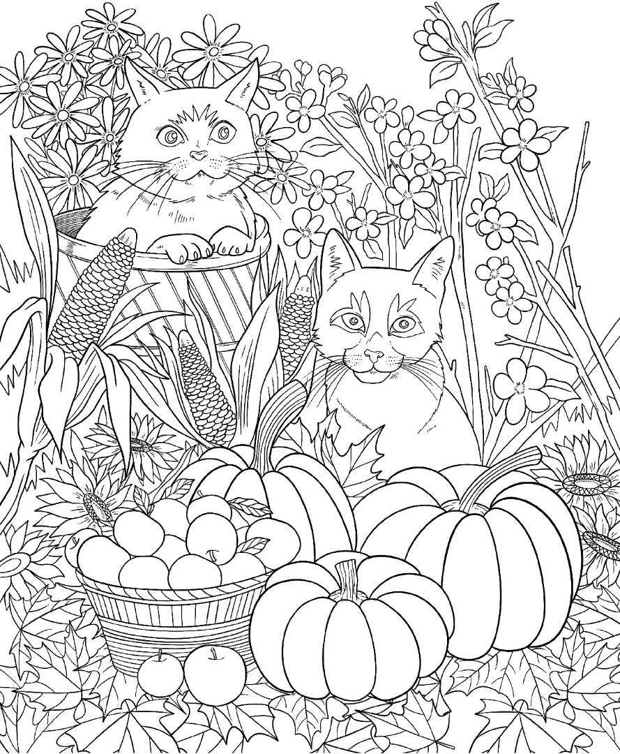 Freebie Friday Autumn Cats Adult Coloring Book TY Page