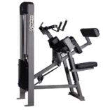 GymLeco Bicep & Tricep Machine