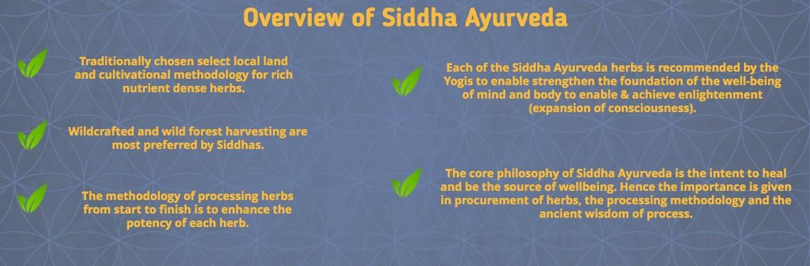 benefits of siddha medicine