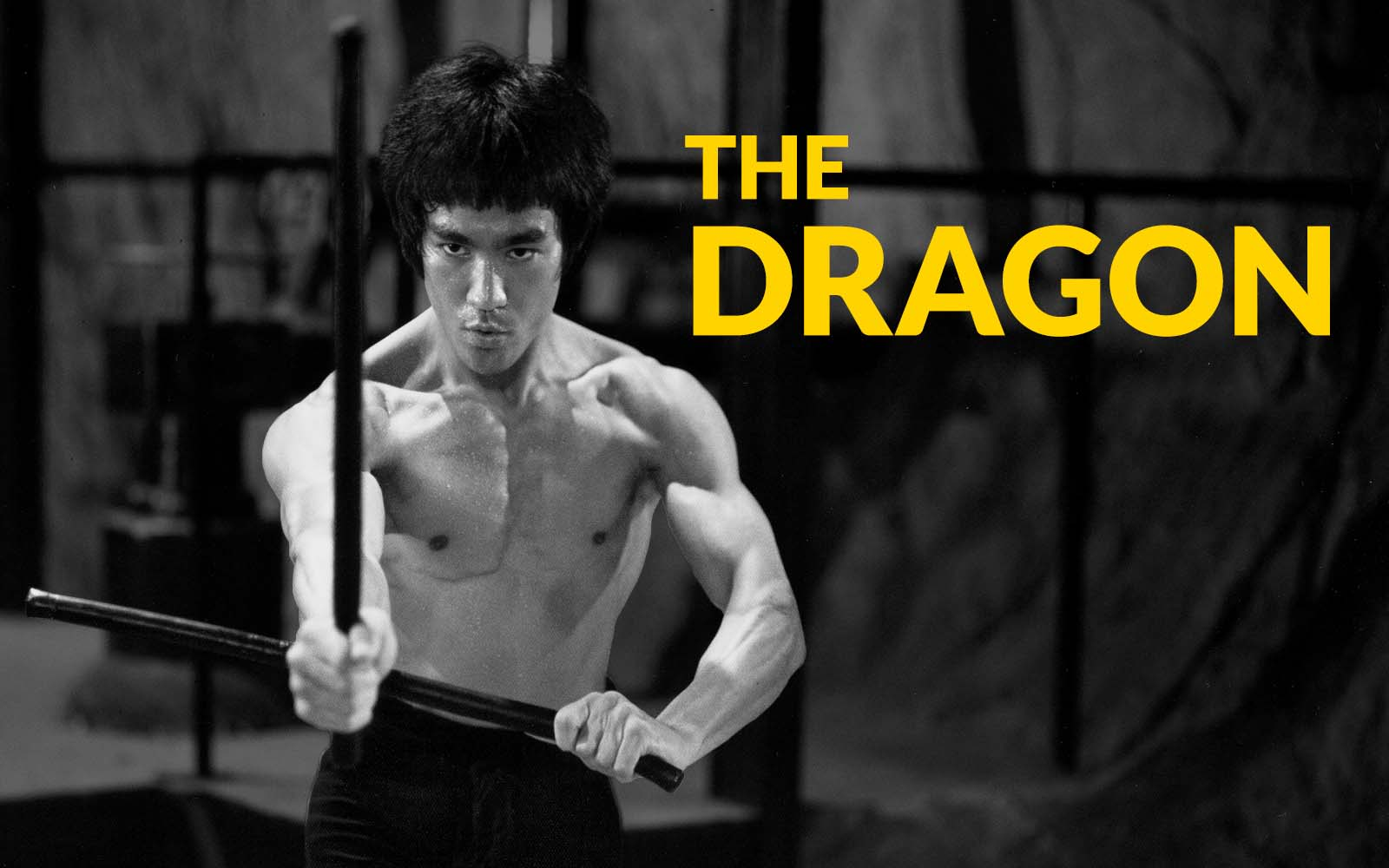 Welcome To The Bruce Lee Family Store, The Official Source of Bruce Lee Merchandise
