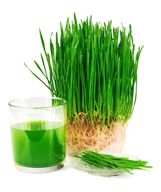 What vitamins are in wheatgrass powder