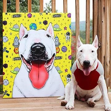 Bull Terrier next to pop art