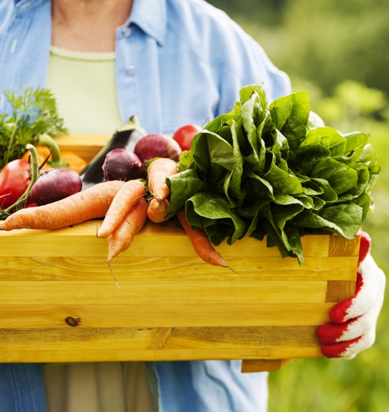 Organic and raw ingredients