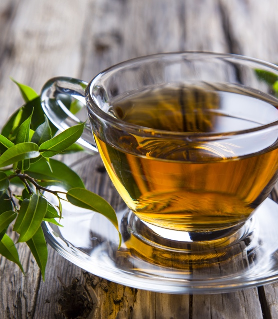 Can green tea boost your metabolism?