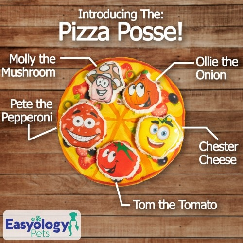 Easyology Pets Cat Pizza - Introducing The Pizza Posse