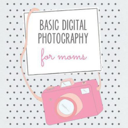 Basic Digital Photography Curriculum for Teaching Momtography Classes