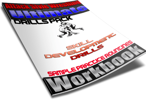 Skill Development Workbook