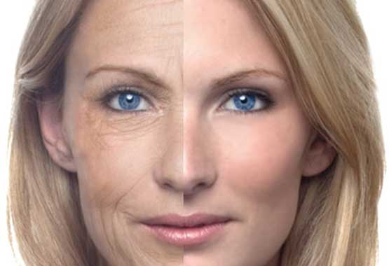 should you use phytonol face oil