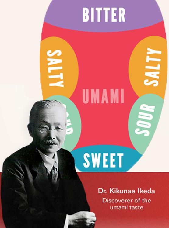 umami flavor dr Kikunae Ikeda