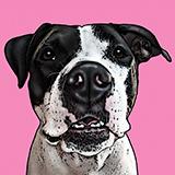 Pup pop art