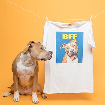 2 pups next to pop art