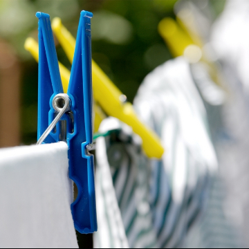 Clothesline Guanaba 4210 QLD