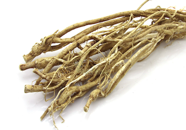 Organic Astragalus Root Alkamist Swhey Nutrition Women