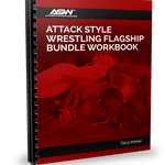 Flagship Bundle Workbook