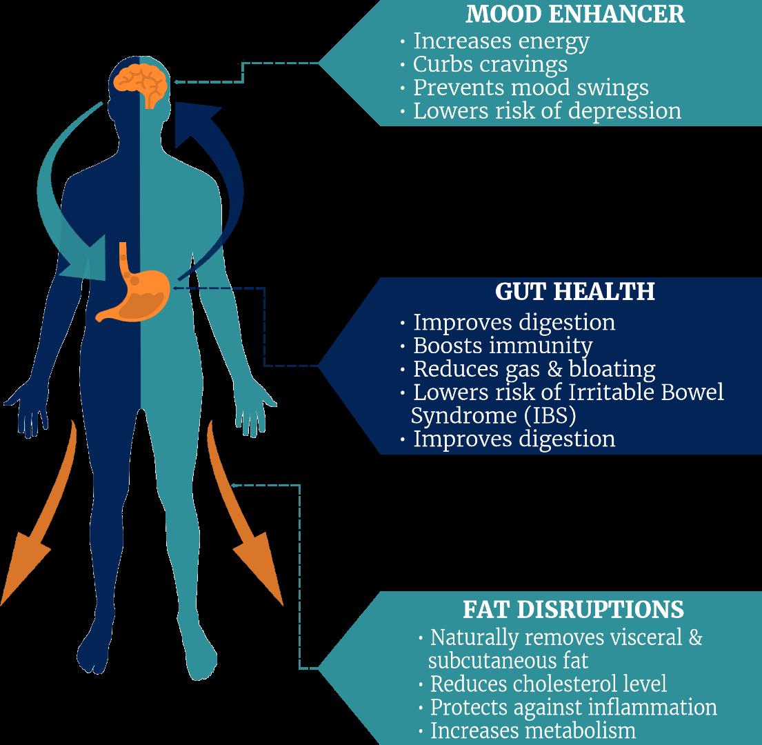 Provitalize Health Benefits
