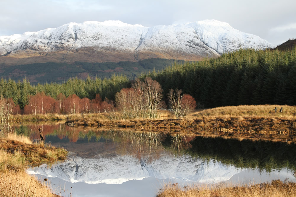 Land Management in the Scottish Highlands
