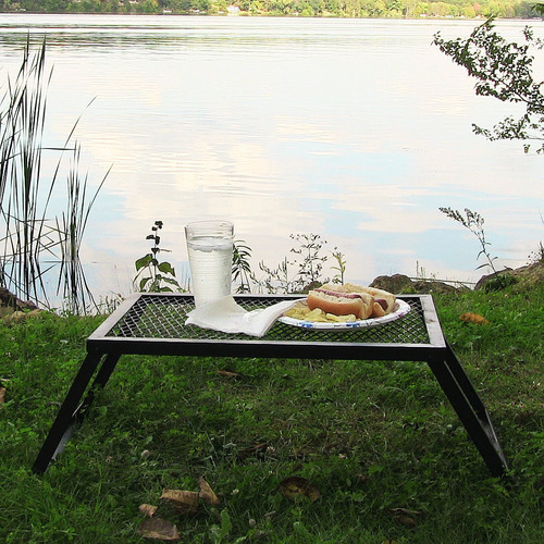 portable steel dinner tray