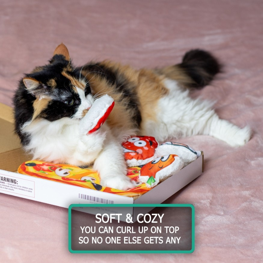 Easyology Pets Cat Pizza - Kitty Lays In Box