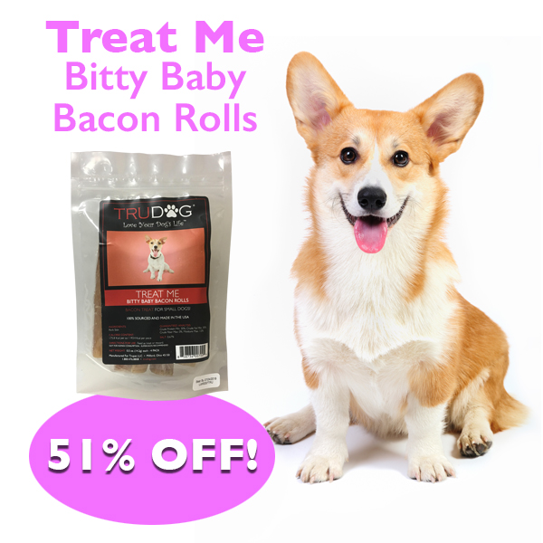 Daily Deal - Treat Me Bitty Baby Bacon Rolls