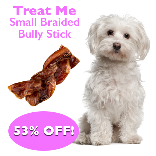 Daily Deal - Small Braided Bully Stick