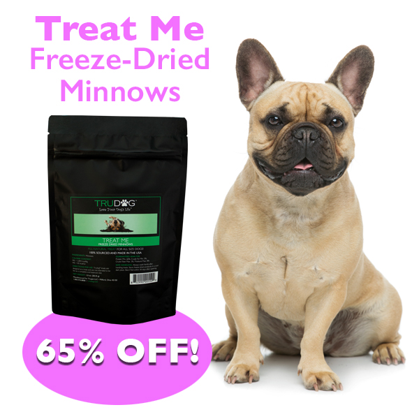 Daily Deal - Dried Minnows for Dogs