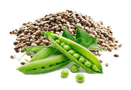 peas and hemp
