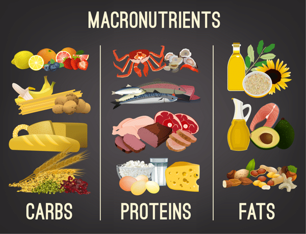 Do macros fit for mountain bikers nutrition