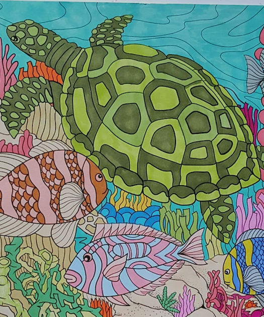 The Best of ColorIt Coloring Book Sea Turtle