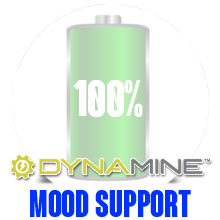 Dynamine ronnie coleman yeah buddy pre workout