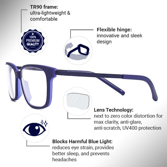 Pictor Computer Glasses Features Infographic | Umizato